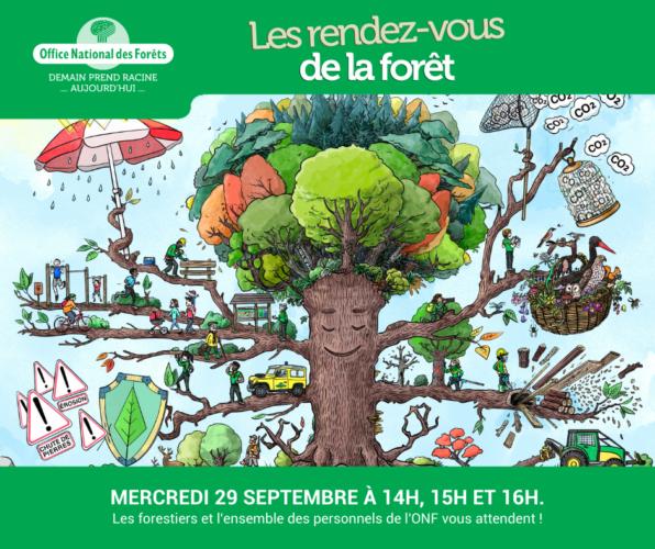 Rencontres avec l'Office National des Forêts